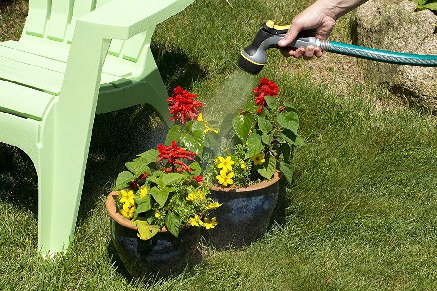 Watering Flowers With Plastic Hose